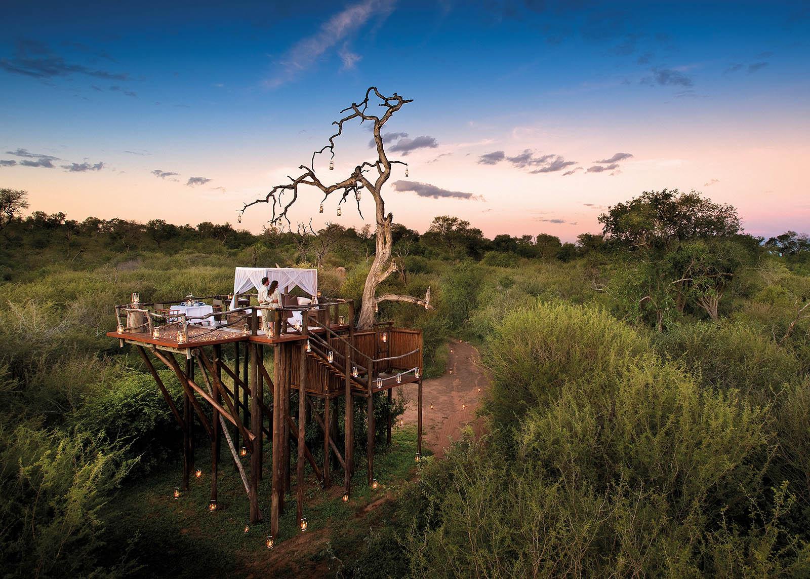 Luxury safari 4